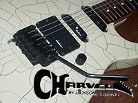 Original icon for my Charvel Guitars Facebook Group